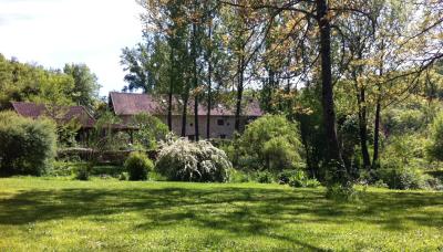 jardin-cropped